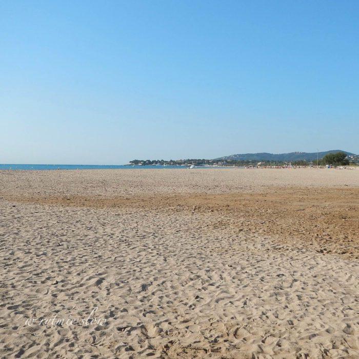 plaża dla psów na lazurowym wybrzeżu
