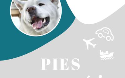 Haku na szlaku – wakacje z psem w Ameryce Płd.