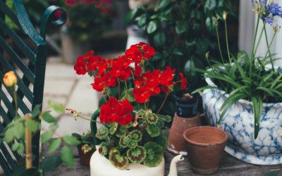 20 rzeczy, które musisz zrobić wiosną