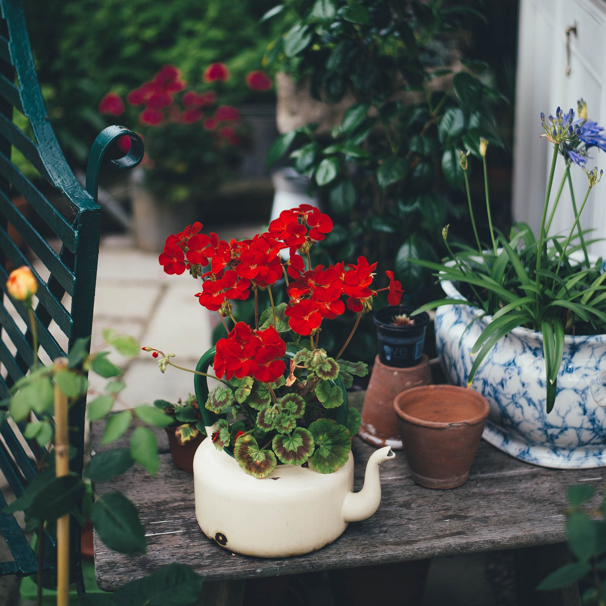 20 rzeczy które musisz zrobić wiosną