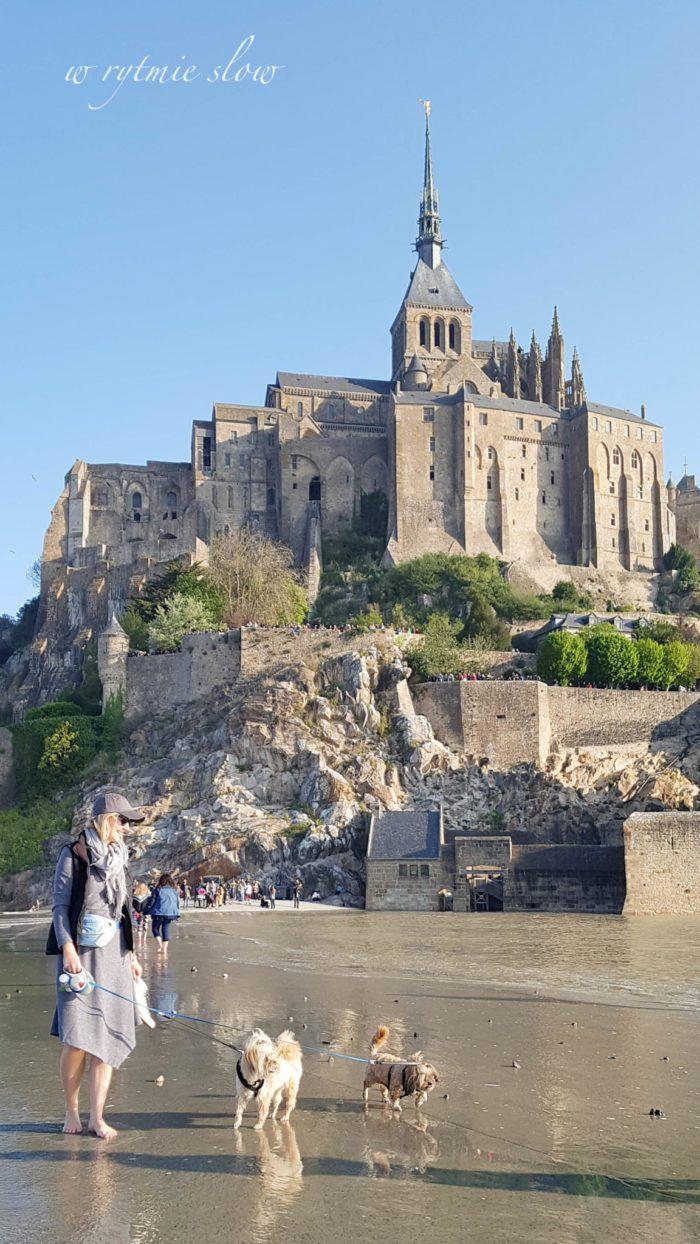 Mont Saint Michel z psem